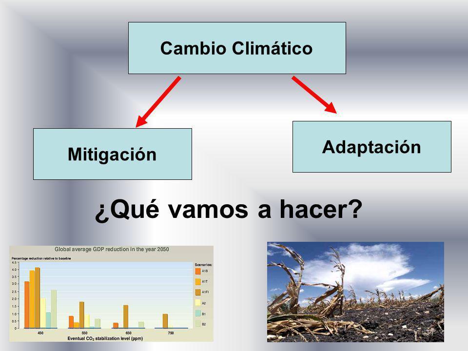 Cambio Climático Mitigación Adaptación ¿Qué vamos a hacer?