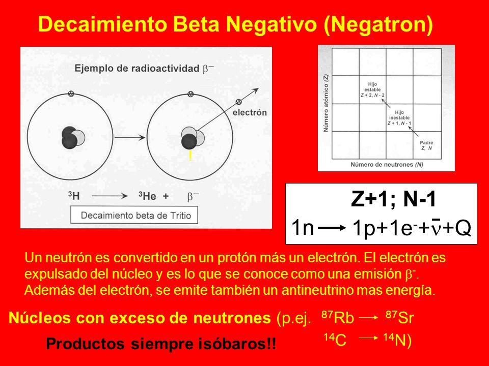 Decaimiento Beta Negativo (Negatron) Un neutrón es convertido en un protón más un electrón. El electrón es expulsado del núcleo y es lo que se conoce