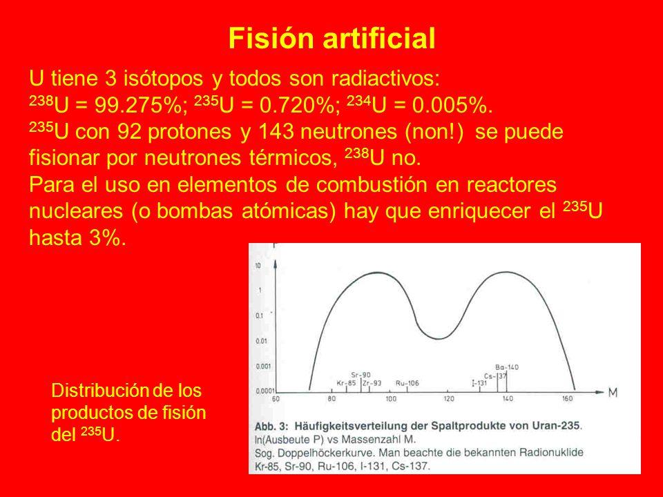 Fisión artificial U tiene 3 isótopos y todos son radiactivos: 238 U = 99.275%; 235 U = 0.720%; 234 U = 0.005%. 235 U con 92 protones y 143 neutrones (