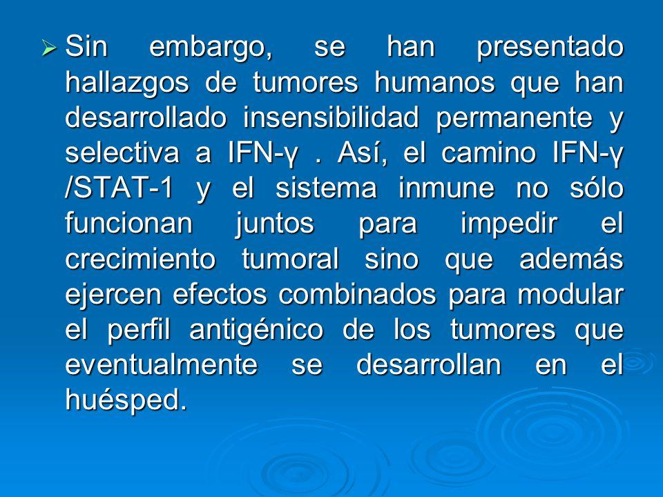 Sin embargo, se han presentado hallazgos de tumores humanos que han desarrollado insensibilidad permanente y selectiva a IFN-γ. Así, el camino IFN-γ /