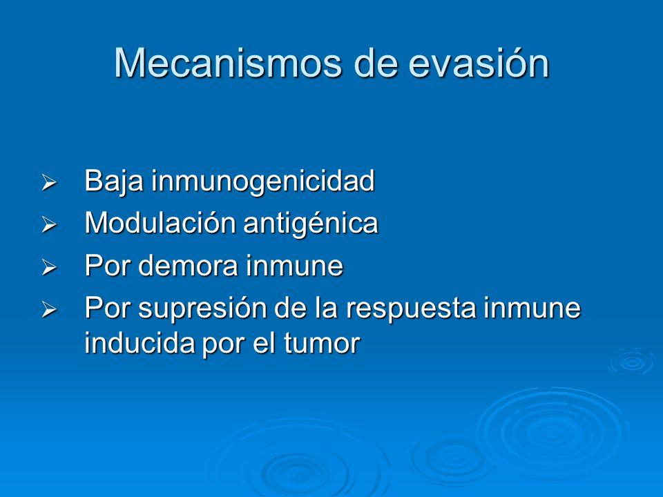 Mecanismos de evasión Baja inmunogenicidad Baja inmunogenicidad Modulación antigénica Modulación antigénica Por demora inmune Por demora inmune Por su