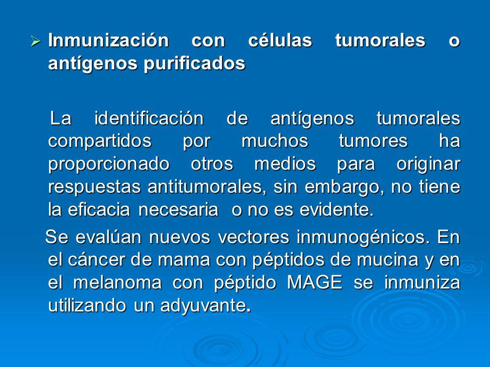 Inmunización con células tumorales o antígenos purificados Inmunización con células tumorales o antígenos purificados La identificación de antígenos t