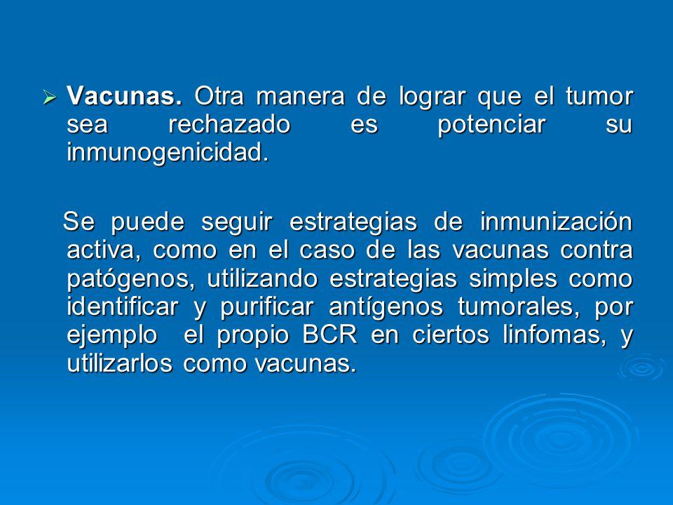 Vacunas. Otra manera de lograr que el tumor sea rechazado es potenciar su inmunogenicidad. Vacunas. Otra manera de lograr que el tumor sea rechazado e
