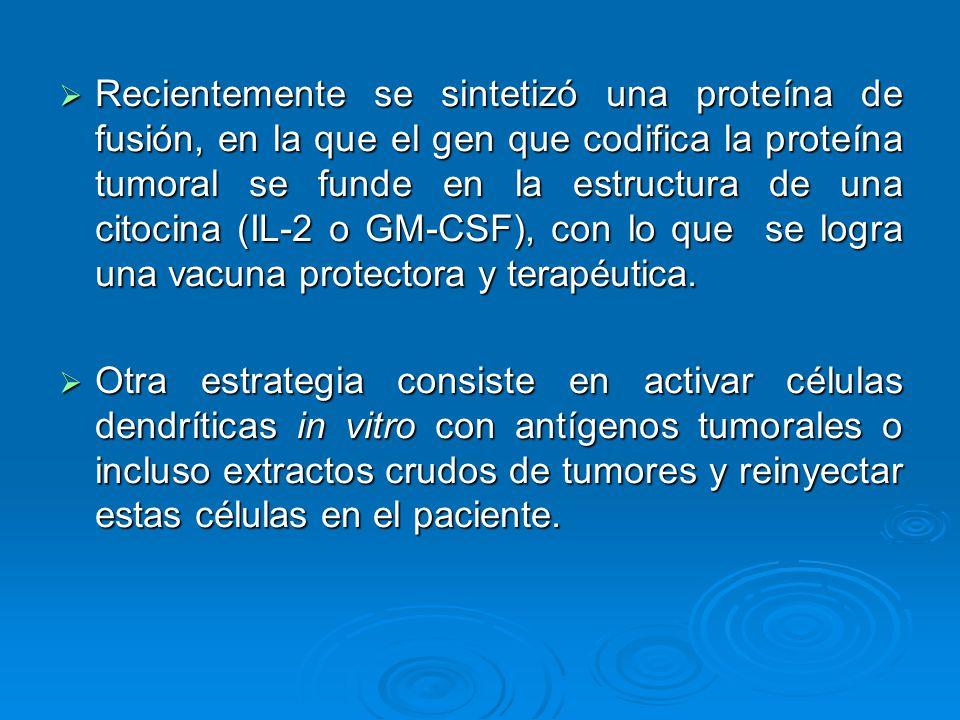 Recientemente se sintetizó una proteína de fusión, en la que el gen que codifica la proteína tumoral se funde en la estructura de una citocina (IL-2 o
