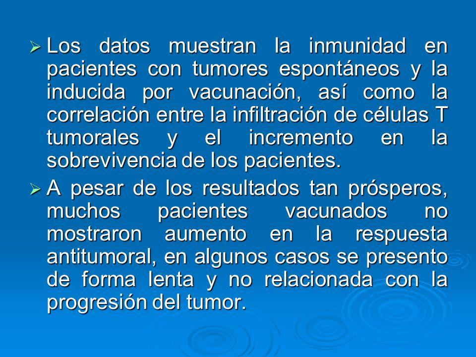 Los datos muestran la inmunidad en pacientes con tumores espontáneos y la inducida por vacunación, así como la correlación entre la infiltración de cé