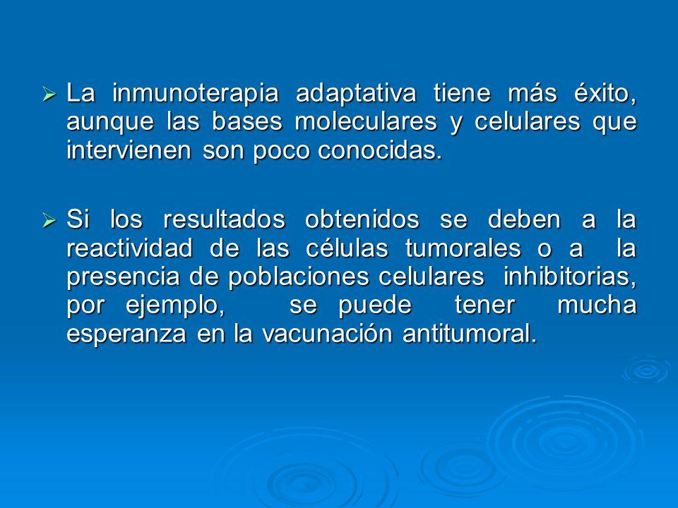 La inmunoterapia adaptativa tiene más éxito, aunque las bases moleculares y celulares que intervienen son poco conocidas. La inmunoterapia adaptativa