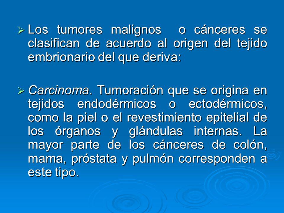 Los tumores malignos o cánceres se clasifican de acuerdo al origen del tejido embrionario del que deriva: Los tumores malignos o cánceres se clasifica