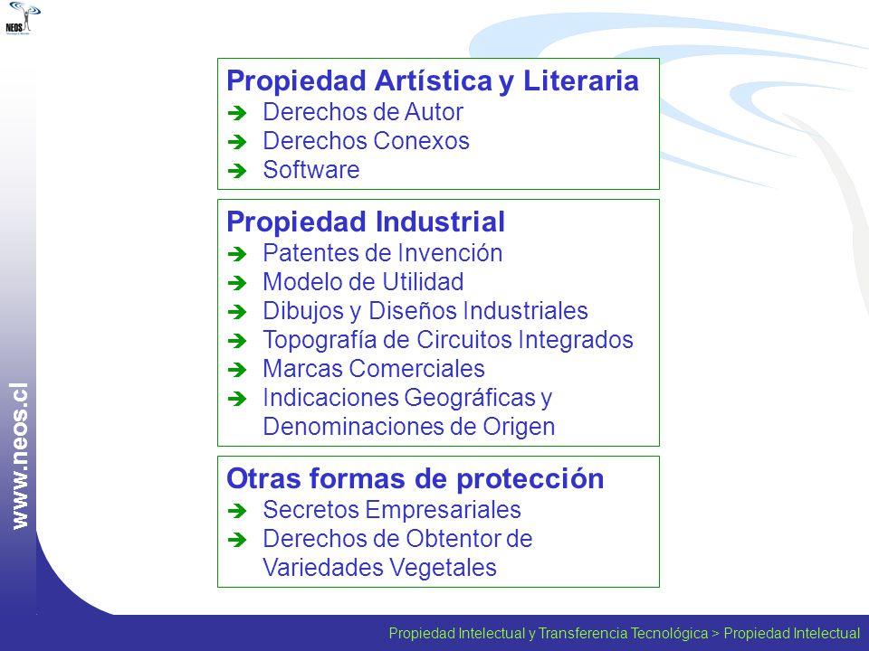 Propiedad Intelectual y Transferencia Tecnológica > Propiedad Intelectual w w w. n e o s. c l Propiedad Artística y Literaria Derechos de Autor Derech
