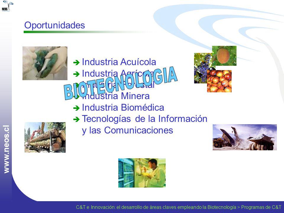 w w w. n e o s. c l Oportunidades Industria Acuícola Industria Agrícola Industria Forestal Industria Minera Industria Biomédica Tecnologías de la Info