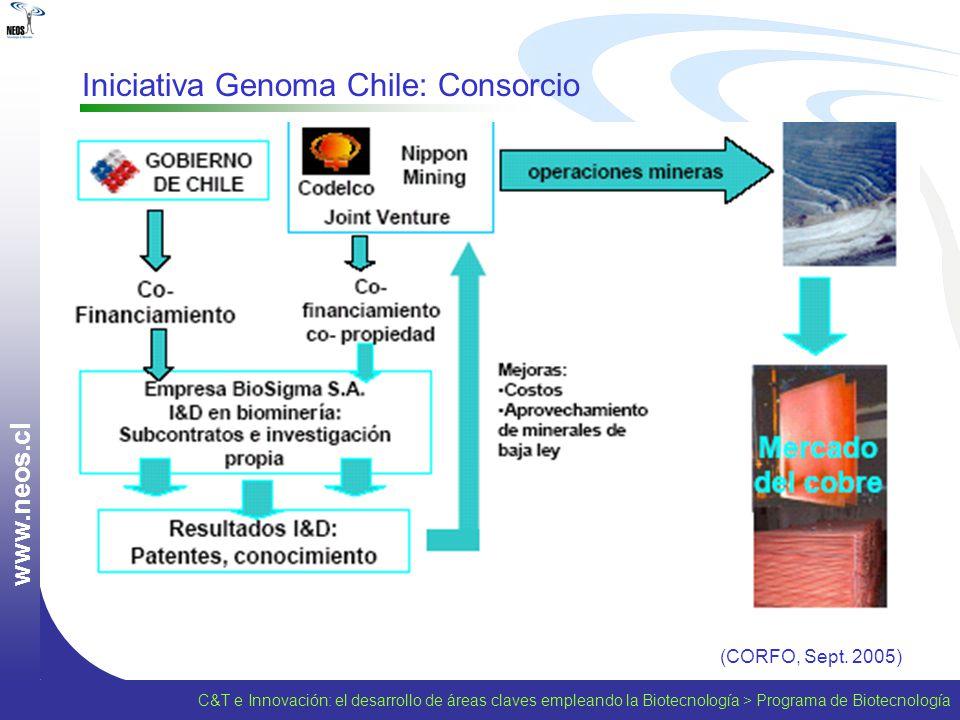 w w w. n e o s. c l Iniciativa Genoma Chile: Consorcio (CORFO, Sept. 2005) C&T e Innovación: el desarrollo de áreas claves empleando la Biotecnología