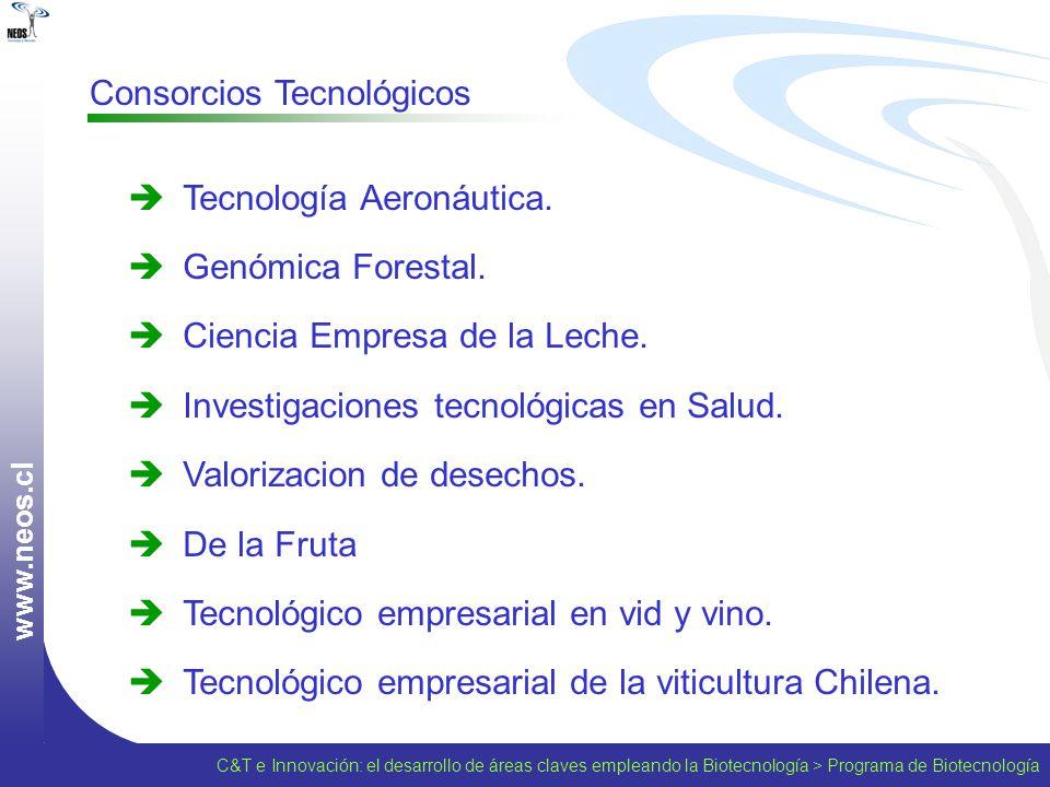 w w w. n e o s. c l Consorcios Tecnológicos Tecnología Aeronáutica. Genómica Forestal. Ciencia Empresa de la Leche. Investigaciones tecnológicas en Sa