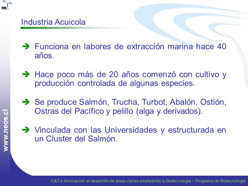 w w w. n e o s. c l Industria Acuicola Funciona en labores de extracción marina hace 40 años. Hace poco más de 20 años comenzó con cultivo y producció