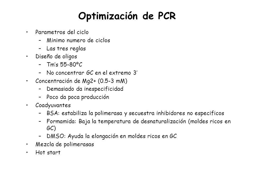 Optimización de PCR Parametros del ciclo –Minimo numero de ciclos –Las tres reglas Diseño de oligos –Tms 55-80ºC –No concentrar GC en el extremo 3 Con