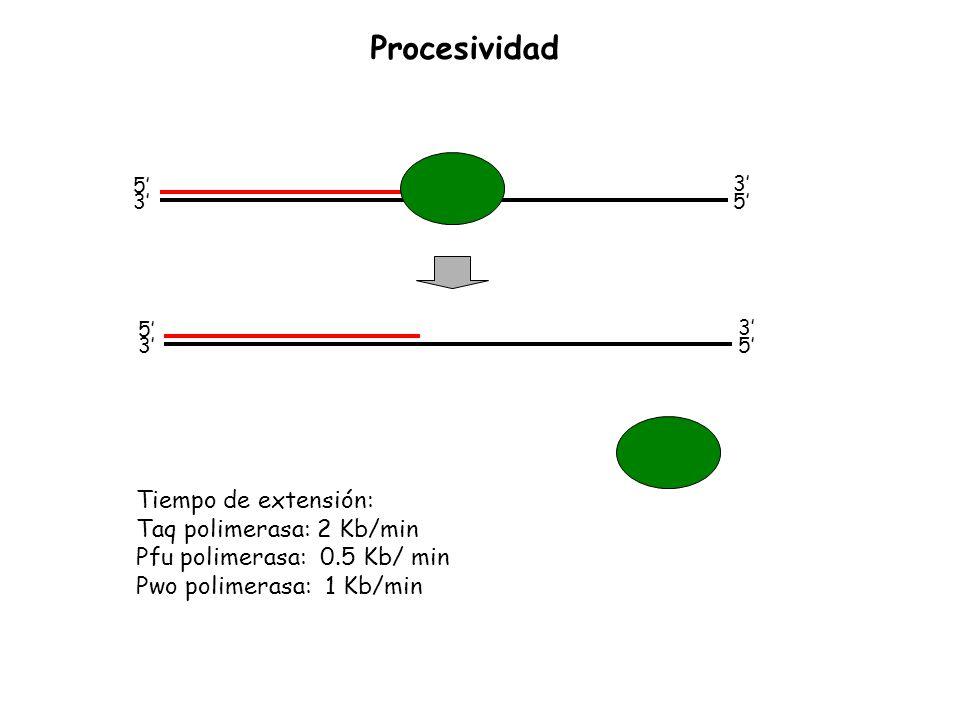 5 3 3 5 5 3 3 5 Tiempo de extensión: Taq polimerasa: 2 Kb/min Pfu polimerasa: 0.5 Kb/ min Pwo polimerasa: 1 Kb/min Procesividad