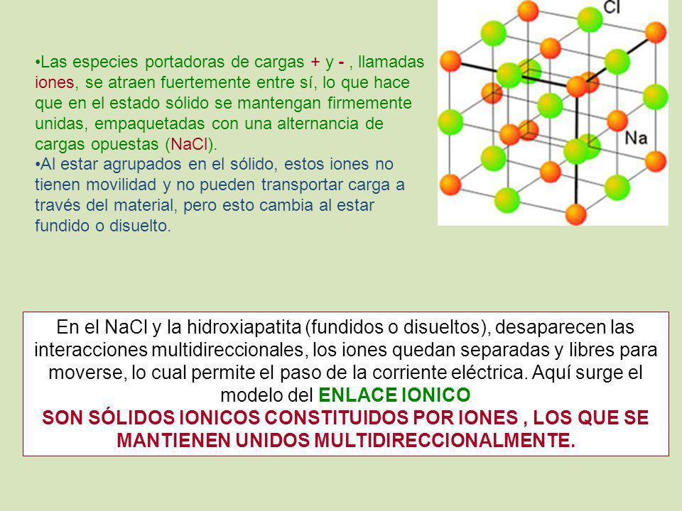 Las especies portadoras de cargas + y -, llamadas iones, se atraen fuertemente entre sí, lo que hace que en el estado sólido se mantengan firmemente u