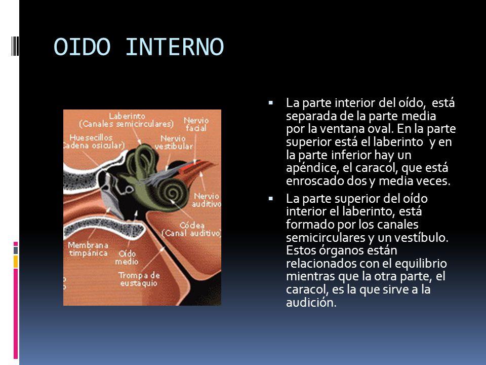 NOM 011 NOM 011 La Norma Oficial Mexicana sobre Condiciones de seguridad e higiene en los centros de trabajo donde se genere ruido (NOM-011- STPS-2001) establece que los trabajadores con una jornada laboral de ocho horas no deben estar expuestos a ruido mayor a 90 decibeles en sus centros laborales.