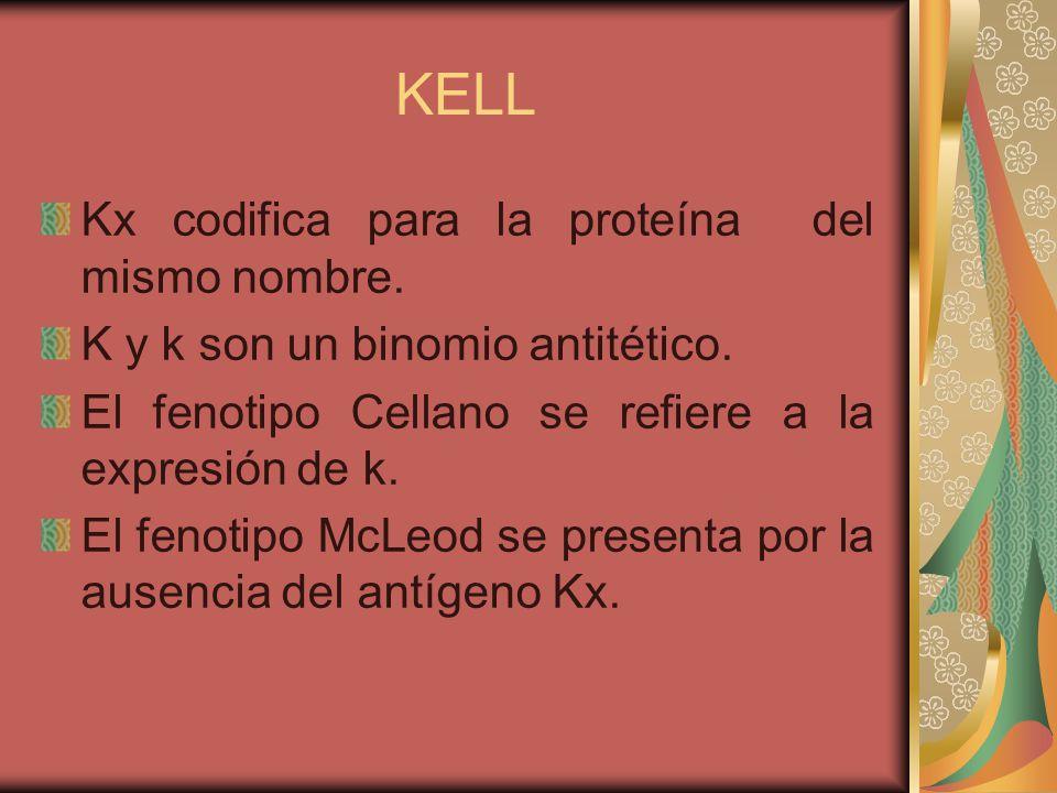 KELL El fenotipo más común es k (90%).