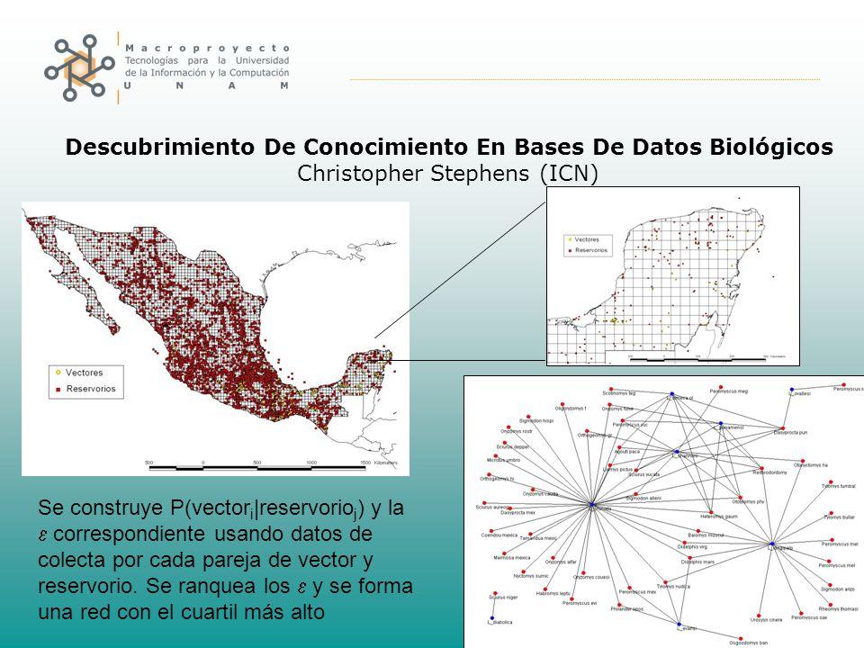 Descubrimiento De Conocimiento En Bases De Datos Biológicos Christopher Stephens (ICN) Se construye P(vector i |reservorio j ) y la correspondiente usando datos de colecta por cada pareja de vector y reservorio.