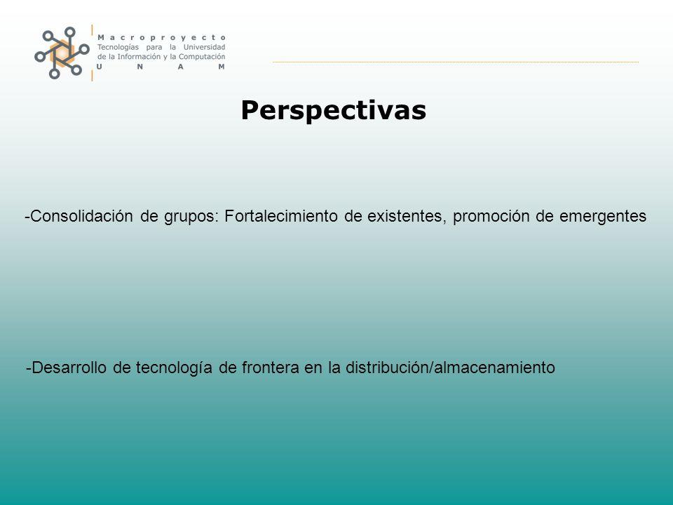 Perspectivas -Consolidación de grupos: Fortalecimiento de existentes, promoción de emergentes -Desarrollo de tecnología de frontera en la distribución/almacenamiento