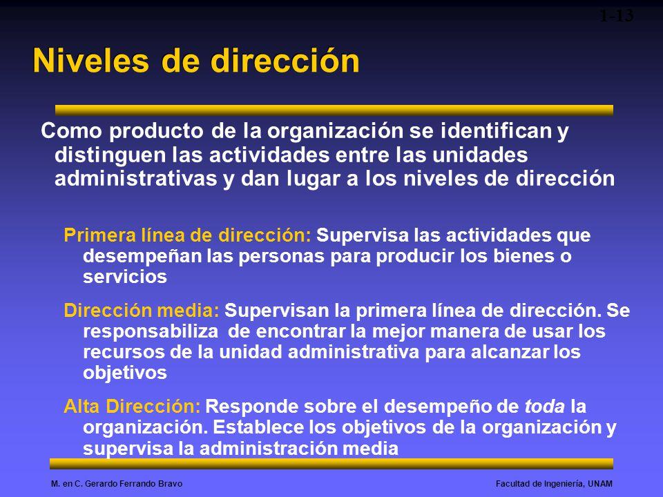 Facultad de Ingeniería, UNAMM. en C. Gerardo Ferrando Bravo Niveles de dirección Como producto de la organización se identifican y distinguen las acti