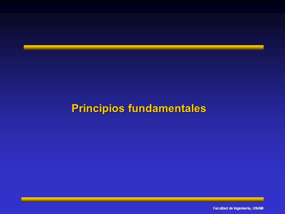 Facultad de Ingeniería, UNAM Principios fundamentales