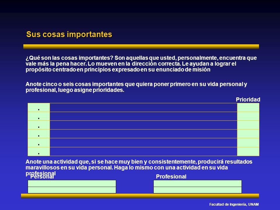 Facultad de Ingeniería, UNAM Sus cosas importantes ¿Qué son las cosas importantes? Son aquellas que usted, personalmente, encuentra que vale más la pe