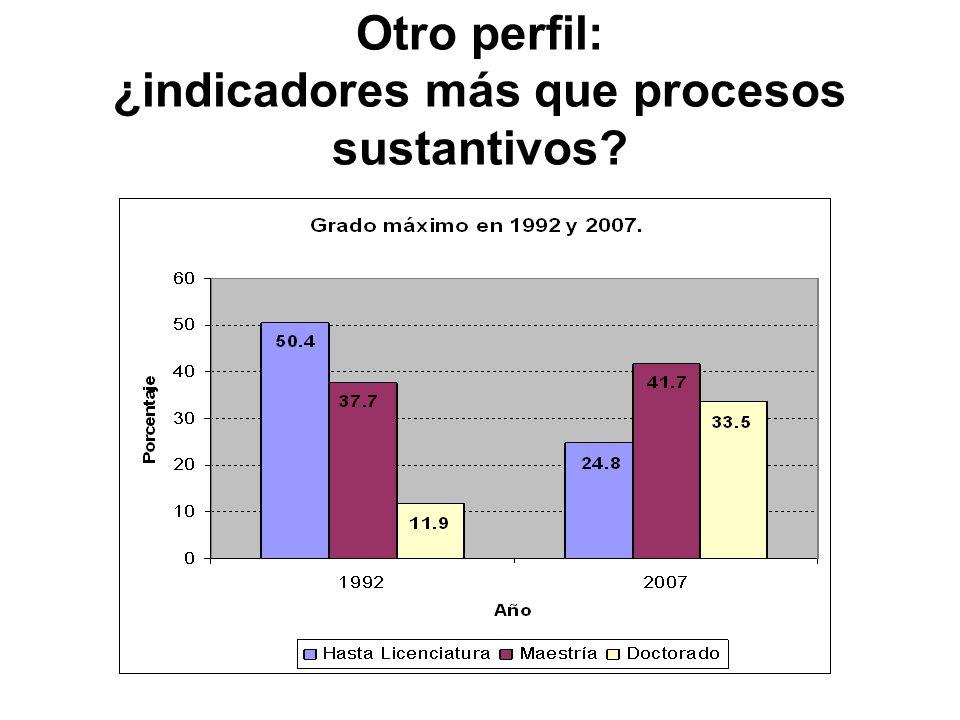 Otro perfil: ¿indicadores más que procesos sustantivos