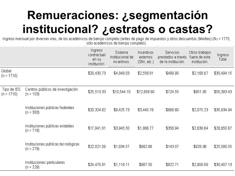 Remueraciones: ¿segmentación institucional ¿estratos o castas