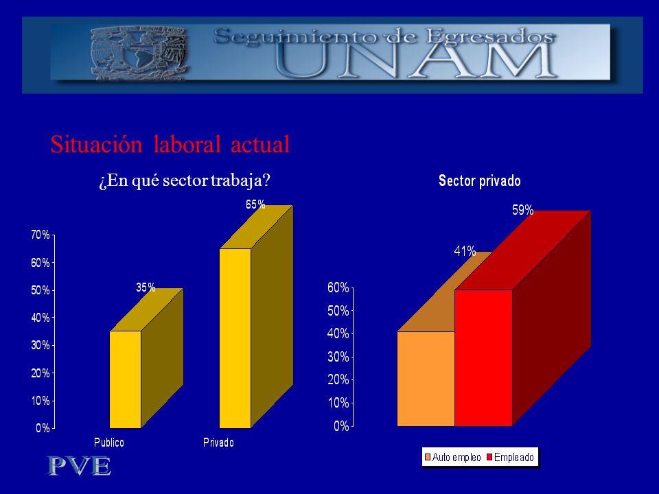 Situación laboral actual ¿En qué sector trabaja?