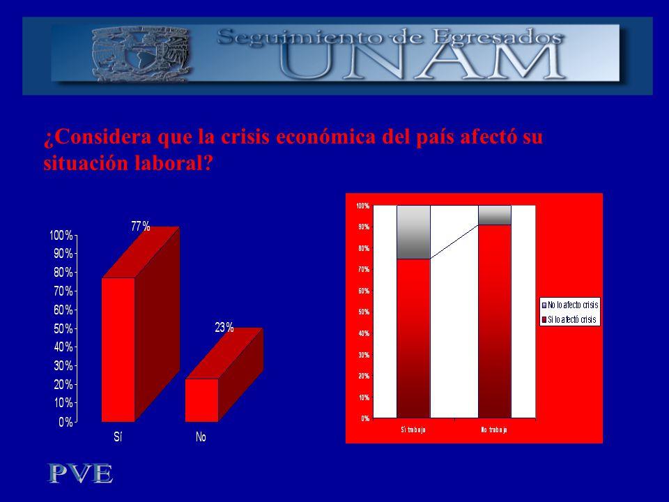 ¿Considera que la crisis económica del país afectó su situación laboral?