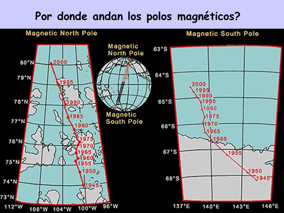Por donde andan los polos magnéticos?