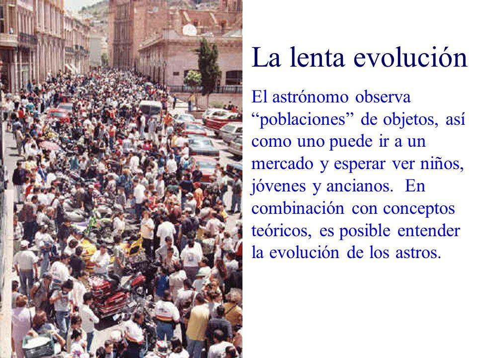La lenta evolución El astrónomo observa poblaciones de objetos, así como uno puede ir a un mercado y esperar ver niños, jóvenes y ancianos. En combina