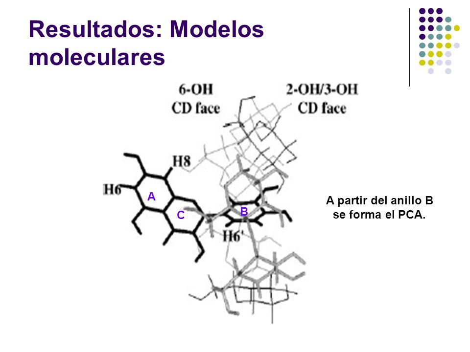 Resultados: Modelos moleculares A C B A partir del anillo B se forma el PCA.