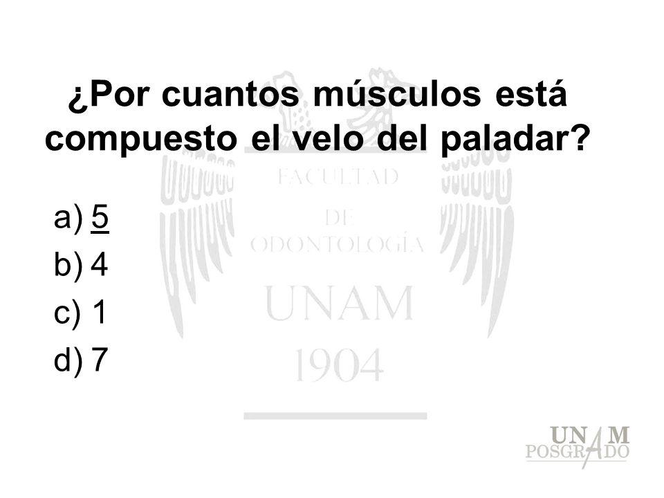 a)5 b)4 c)1 d)7 ¿Por cuantos músculos está compuesto el velo del paladar?