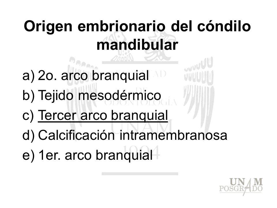 a)2o. arco branquial b)Tejido mesodérmico c)Tercer arco branquial d)Calcificación intramembranosa e)1er. arco branquial Origen embrionario del cóndilo