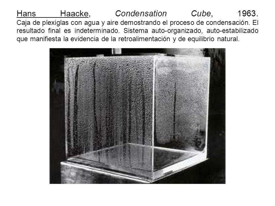Hans Haacke, Condensation Cube, 1963. Caja de plexiglas con agua y aire demostrando el proceso de condensación. El resultado final es indeterminado. S