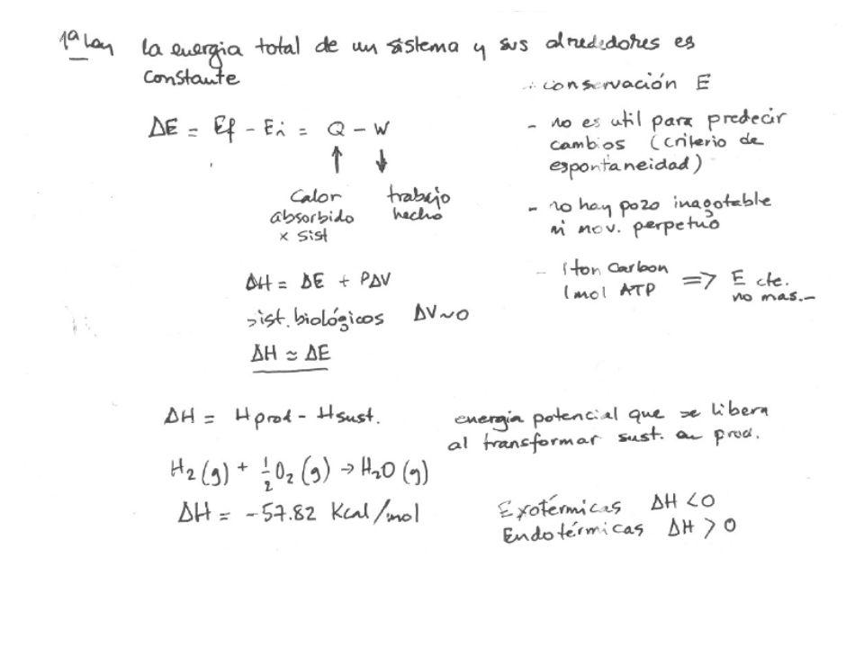Reacción de 1er orden: La velocidad solamente depende de la concentración del sustrato orgánico y no de Z