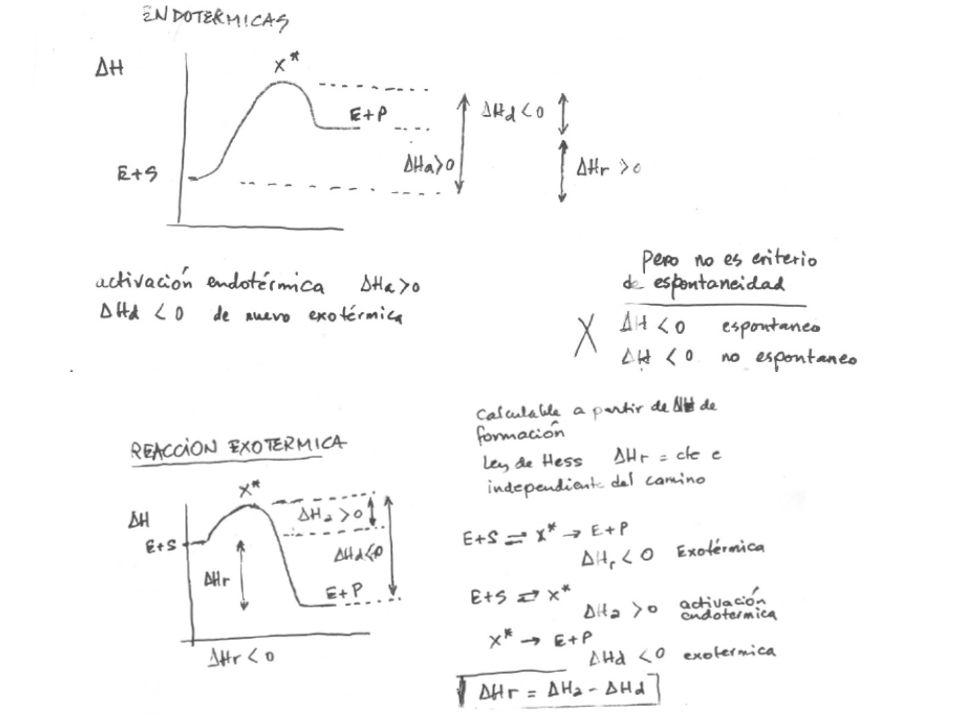 Reacción de 2o orden: La velocidad depende tanto de la concentración del sustrato orgánico como de Z