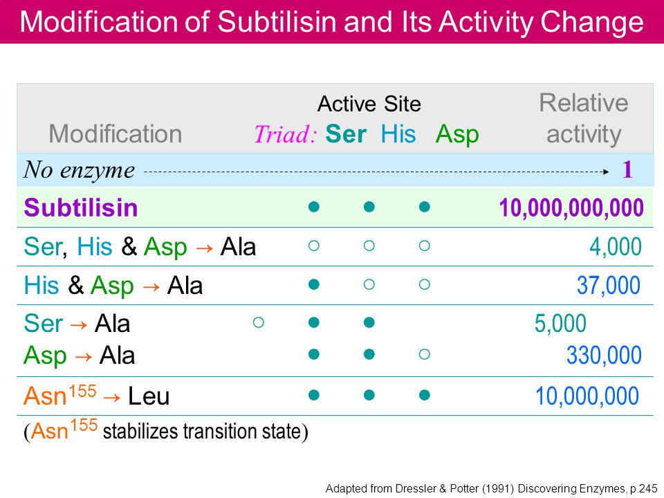 Modification of Subtilisin and Its Activity Change No enzyme 1 Asn 155 Leu 10,000,000 ( Asn 155 stabilizes transition state ) His & Asp Ala 37,000 Ser