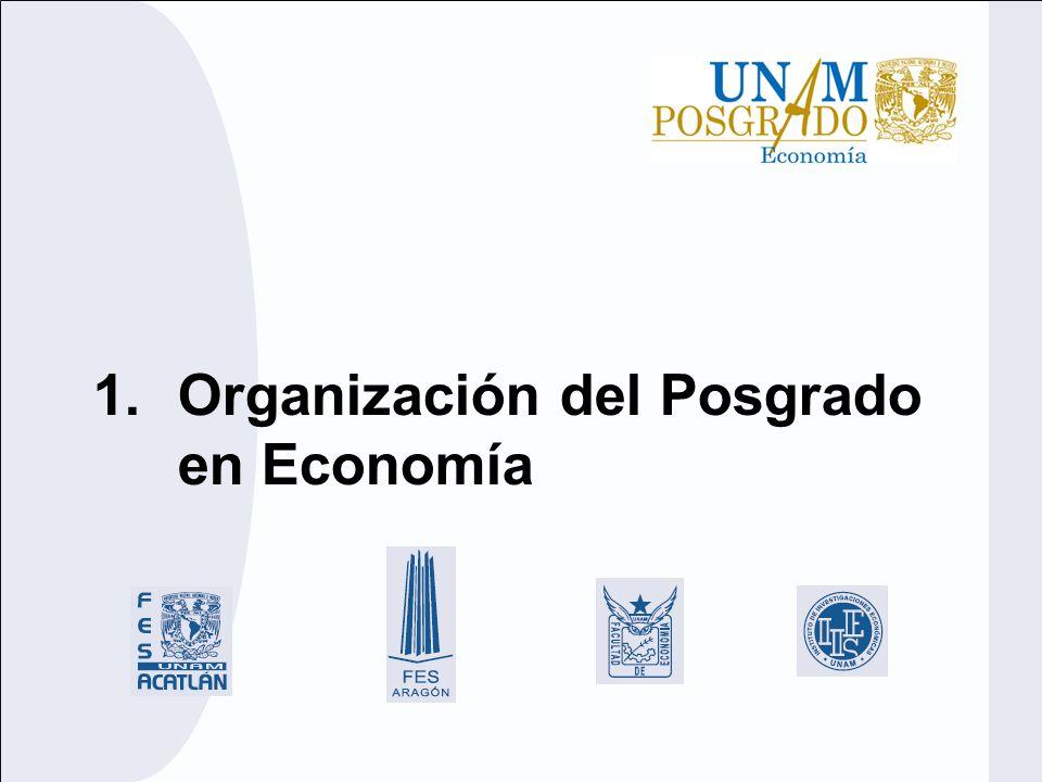 Estructura organizativa Comité Académico Dr.J. Alejandro Salcedo Aquino – FES Acatlán M.