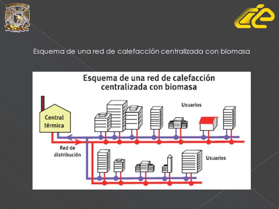 Esquema de una red de calefacción centralizada con biomasa
