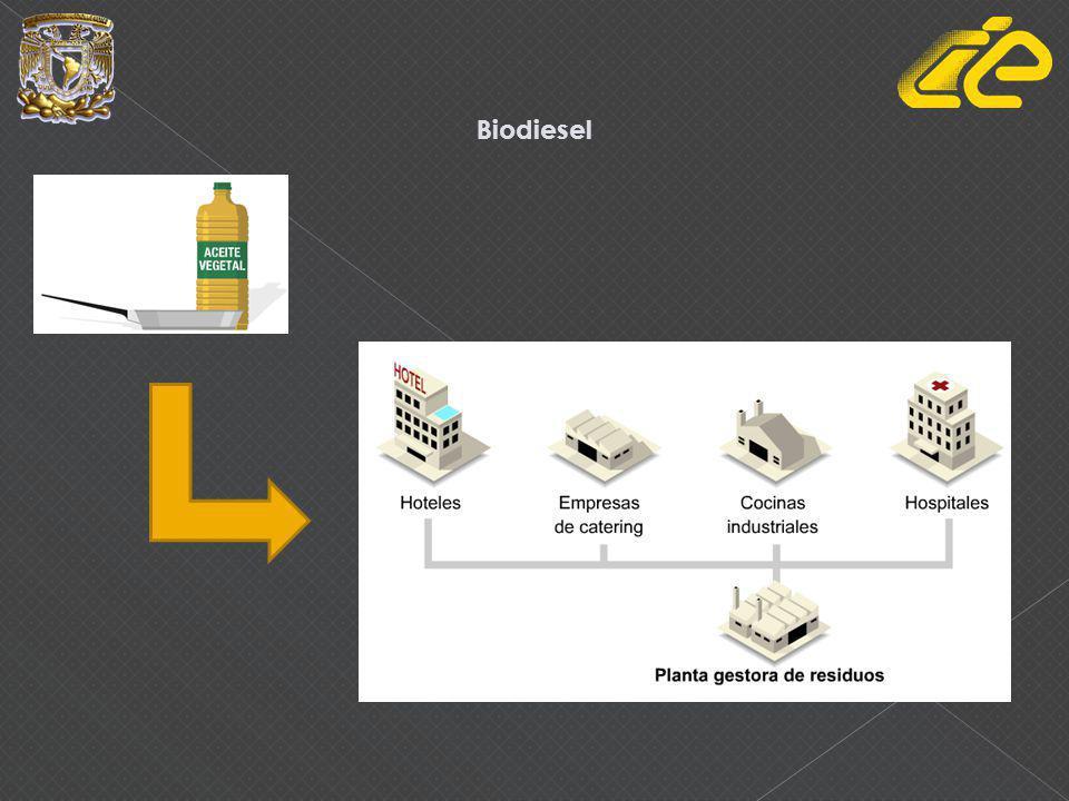 Proceso de transesterificación Aceite vegetal + metanol