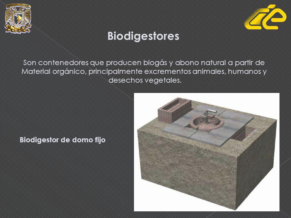 Biodigestores Son contenedores que producen biogás y abono natural a partir de Material orgánico, principalmente excrementos animales, humanos y desechos vegetales.