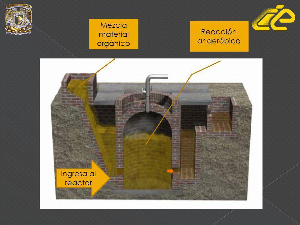 Mezcla material orgánico Ingresa al reactor Reacción anaeróbica