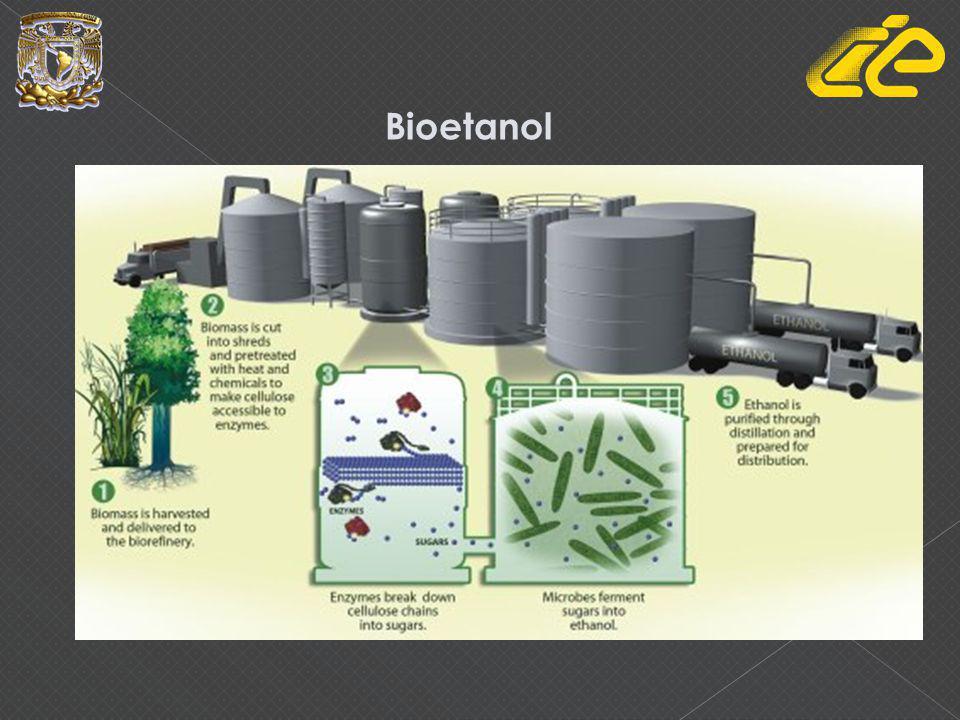 Proceso de producción de Bioetanol