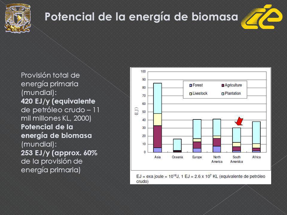 Potencial de la energía de biomasa Provisión total de energía primaria (mundial): 420 EJ/y (equivalente de petróleo crudo – 11 mil millones KL, 2000)