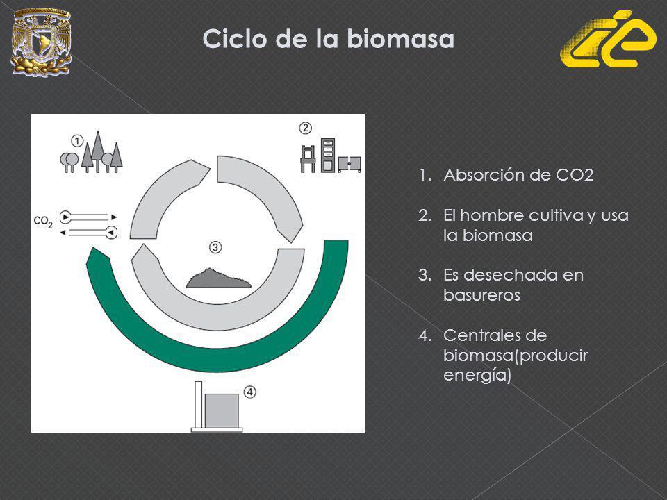 Productos Transformaciones naturales o artificiales Subproductos BIOMASA