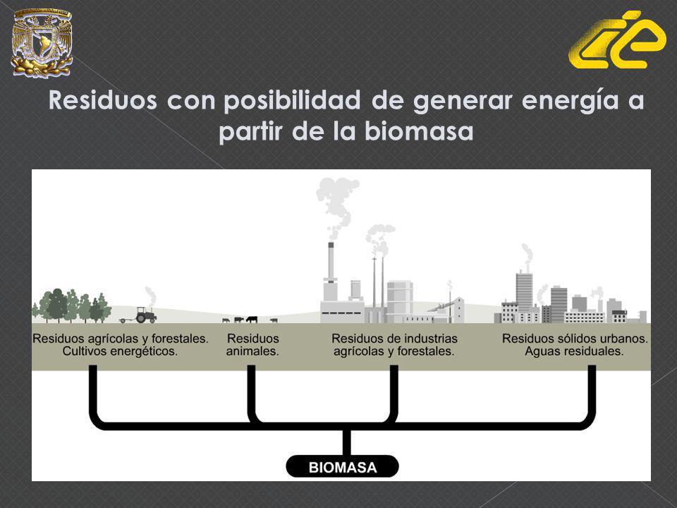Residuos con posibilidad de generar energía a partir de la biomasa