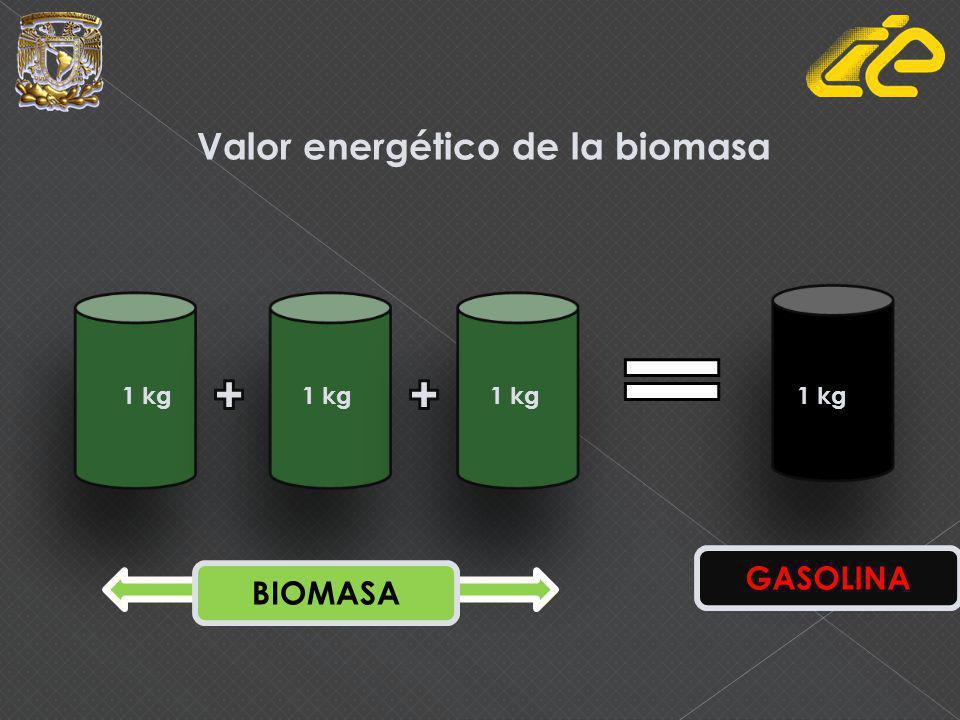 Valor energético de la biomasa 1 kg BIOMASA GASOLINA