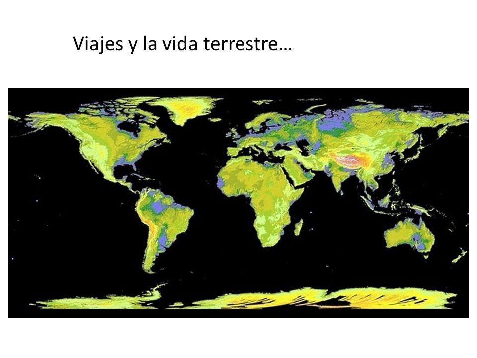 PaisPoblacionArea km2PIB (usd 08) Belize 300,000 23,000 6,740 Guatemala 800,000109,000 4,760 Panama3,400,000 77,000 12,500 Uruguay3,400,000176,000 12,740 Trinidad,Tobago1,300,000 5,000 25,000 Jamaica2,700,000 7,720 11,000 Morelos1,800,000 5,000 14,570 PaisPoblacionArea km2PIB (usd 08) Brunei 400,000 6,000 50,820 Cyprus 900,000 9,000 26,920 Luxembourg 500,000 3,000 78,920 Qatar 900,000 11,000121,740 Singapore4,500,000 1,000 49,320 Bahrain 800,000 1,000 34,900 Norway4,700,000 324,000 58,710 Países comparable con Morelos en área o población 41 de 193 países con menor poblan.